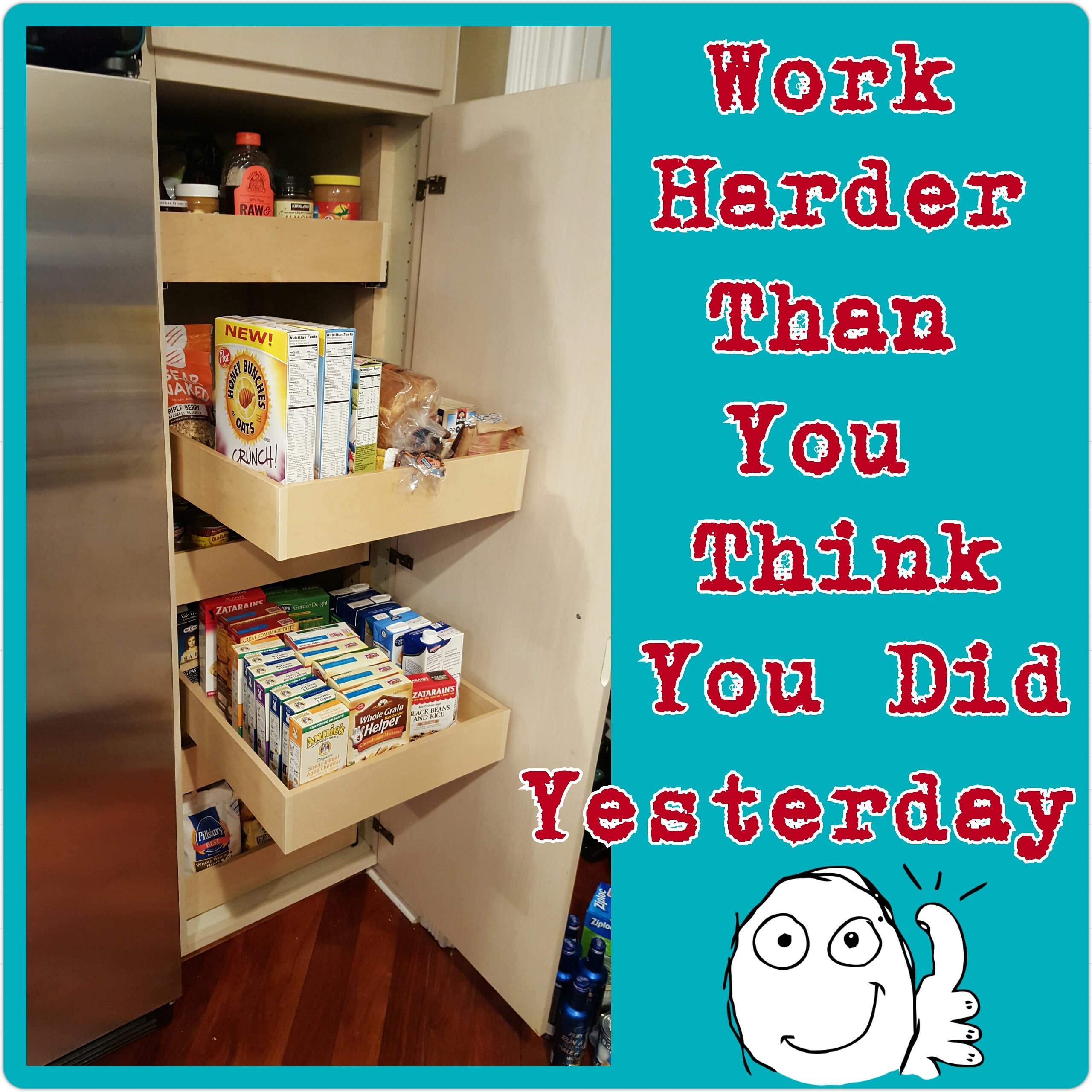 Kitchen Cabinets With Drawers That Roll Out   Cupboard Converters